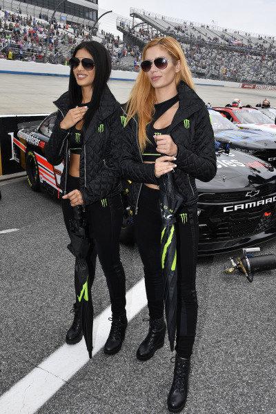 #18: Riley Herbst, Joe Gibbs Racing, Toyota Supra Monster Energy Monster Girls