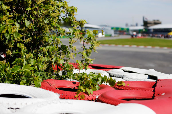 Circuit Gilles Villeneuve, Montreal, Canada. Thursday 4 June 2015. Trees over the barriers next to the circuit. World Copyright: Steven Tee/LAT Photographic. ref: Digital Image _X0W3766