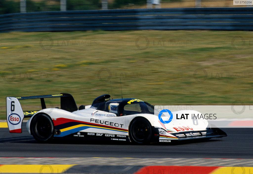 1991 FIA Sportscar World Championship.