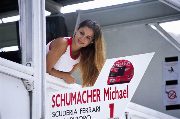 A fan above Michael Schumacher's pit box.