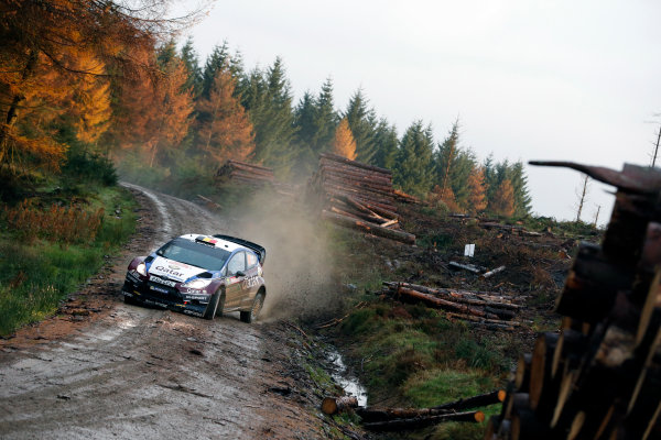 2013 FIA World Rally Championship Round 13-Wales Rally GB 14-17 November 2013 Thierry Neuvilla, Ford WRC, Action.  Worldwide Copyright: McKlein/LAT