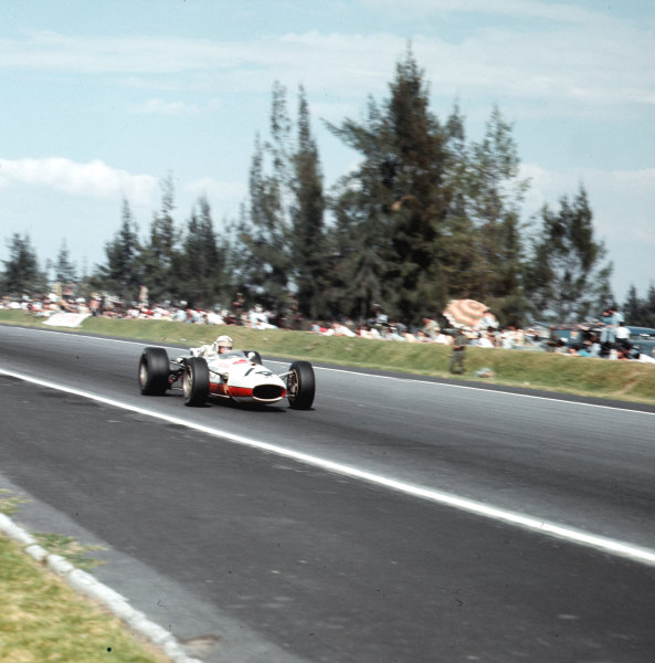 Mexico City, Mexico.21-23 October 1966.Ronnie Bucknum (Honda RA273) 8th position.Ref-3/2384.World Copyright - LAT Photographic