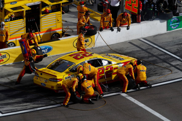 Monster Energy NASCAR Cup Series Can-Am 500 Phoenix Raceway, Avondale, AZ USA Sunday 12 November 2017 Joey Logano, Team Penske, AAA Ford Fusion, pit stop World Copyright: Michael L. Levitt LAT Images