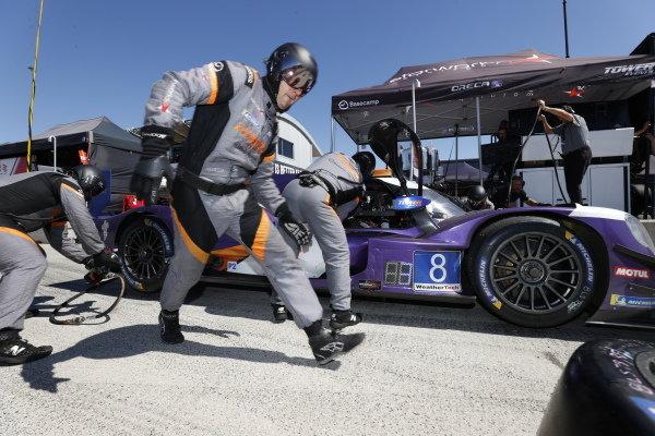 #8: Tower Motorsport ORECA LMP2 07, LMP2: John Farano, Gabriel Aubry, pit stop